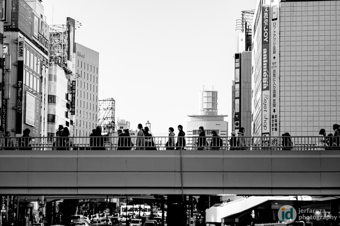 Sendai in Black and White II